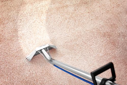 o que você precisa saber para limpar carpete