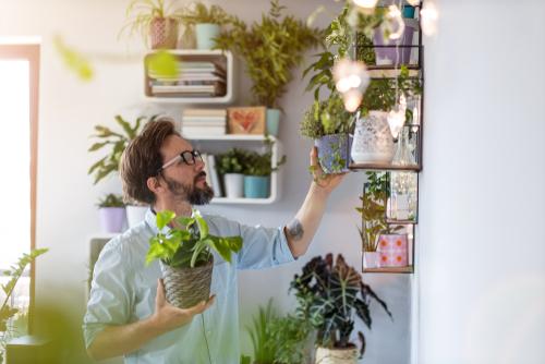 As melhores dicas de como aplicar a sustentabilidade em casa