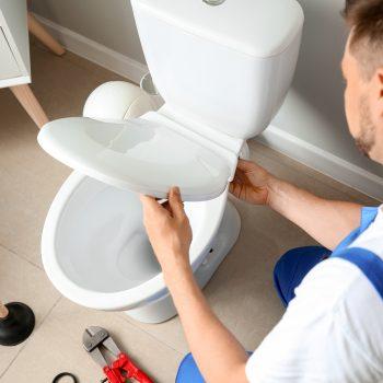 desentupir o vaso sanitário