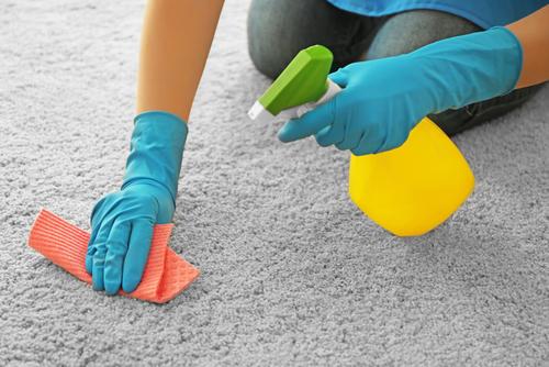 você sabe como limpar carpete? Aqui no blog reunimos as melhotres dicas